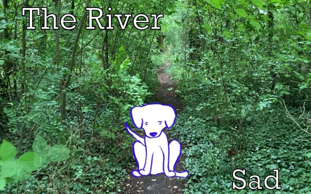 OUT TODAY: MY GIRL THE RIVER/ 'Sad Dog' / The New Single